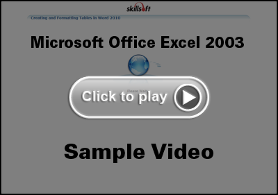 Microsoft Office Excel 2003 Training Video
